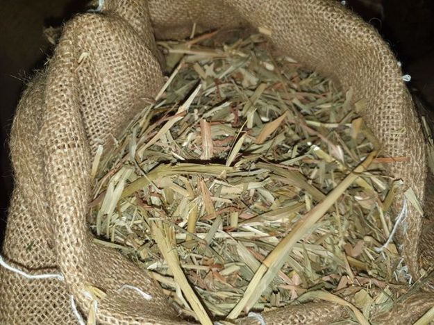 Picture of Oaten Chaff