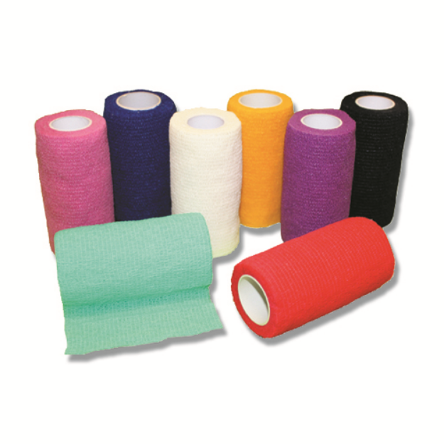 Picture of Bandage Flexi Band - Mixed Box of 12
