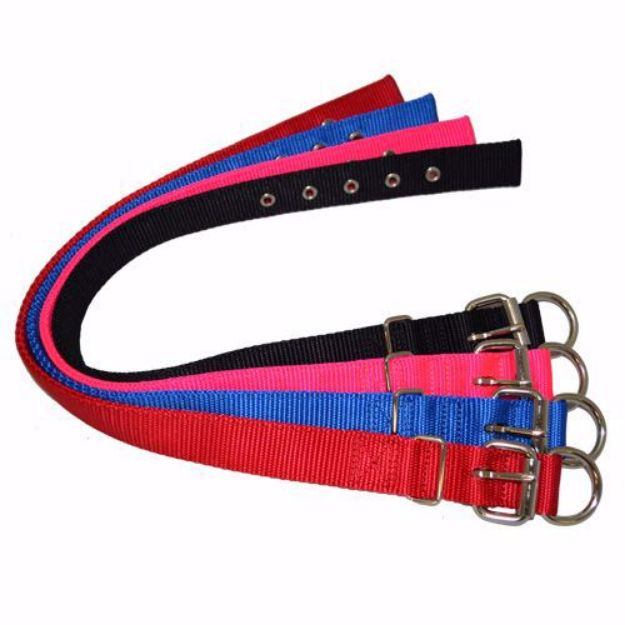 Picture of Dog collar Web