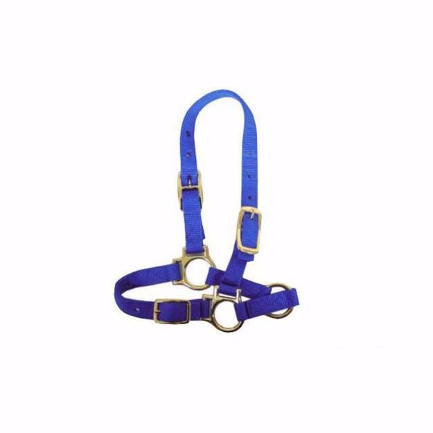 Picture of Sheep/Goat halter