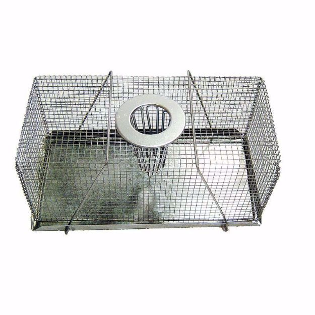 Picture of Mouse Trap  Top Entry - Small (18cm)