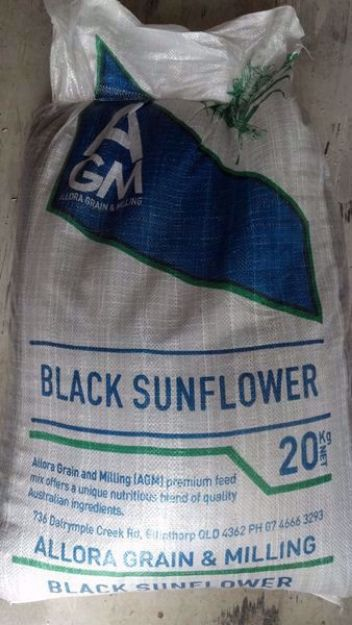 Picture of Black Sunflower Seeds - 5KG