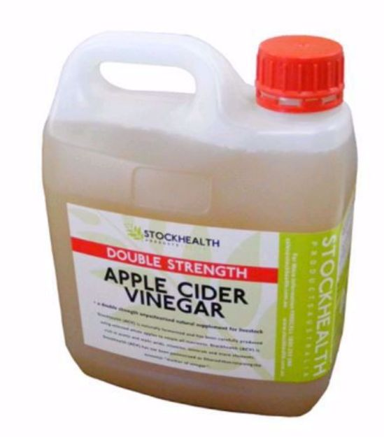 Picture of Apple Cider Vinegar - Double Strenght 2LTR