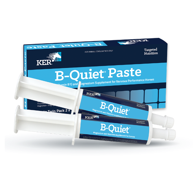 Picture of B-Quiet Paste - Twin Pack