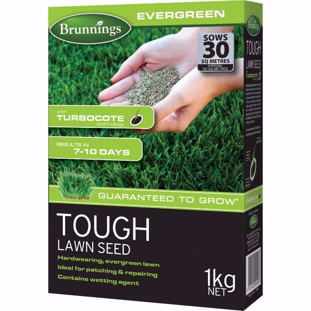 Picture of Brunnings Tough Lawn Seed 1KG