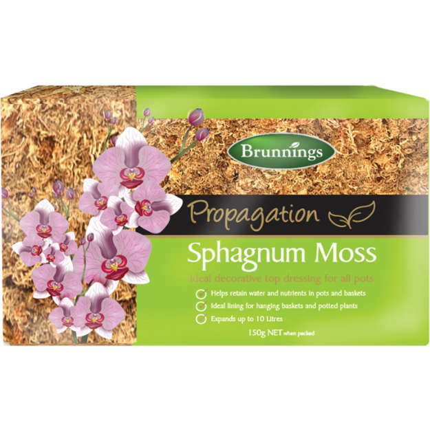 Picture of Brunnings Sphagnum Moss 150g