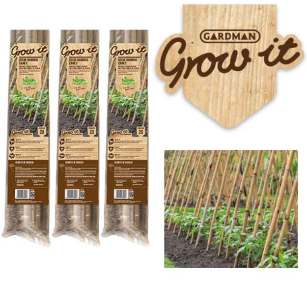 Picture of Bamboo Cane Prepack (20PK) Natural 1.2m