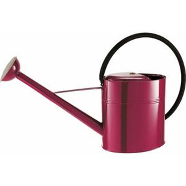 Picture of Metal Watering Can Burgundy 10L